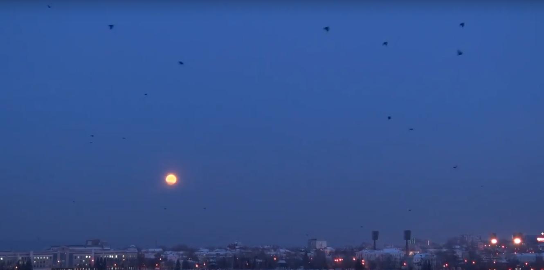 Жители России увидели суперлуние