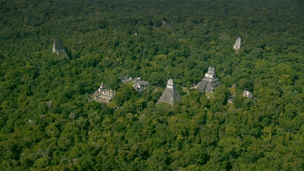 Пирамиды майя в глубине джунглей