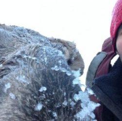 спас лося